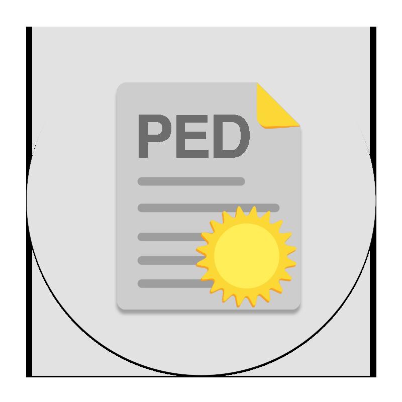 Consulenza PED